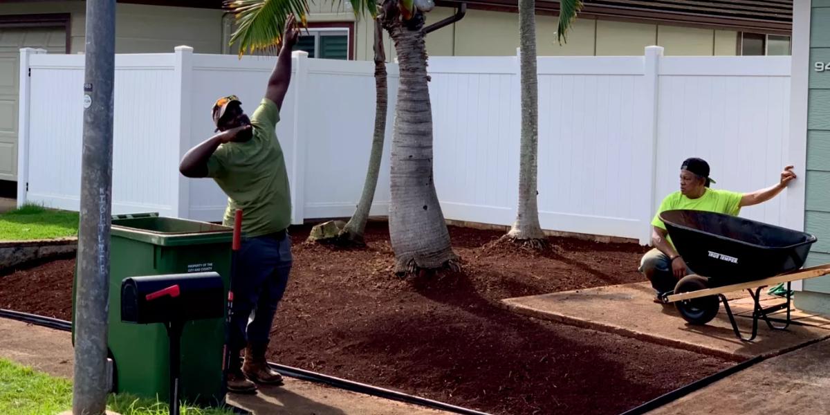 tree trimming honolulu